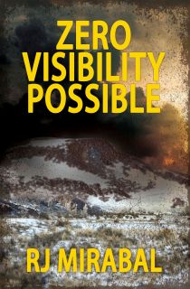 Zero Visibility Possible FRONT cover FINAL