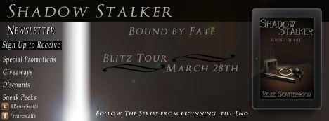 Blitz Banner